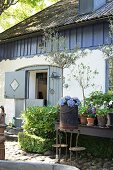 Various flowering potted plants and vintage plant stand outside country house with stable door
