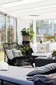 Couch in front of black cane chair and houseplants in conservatory extension