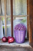 Purple allium flower in purple pot next to red onions on rustic windowsill