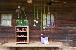 Alliums and red onions on wooden shelves outside traditional wooden house