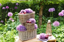 Arrangement of alliums and red onions in wicker baskets