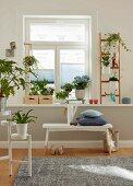 Pflanzengalerie auf weißem Fensterbrett mit Holzkistchen und angelehnter Leiter