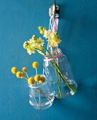 Flowers in screw-top jars hung on blue wall