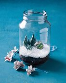 Succulents in terrarium made from screw-top jar