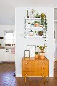 Alte Holzkommode unter einem Wandregal mit Pflanzen