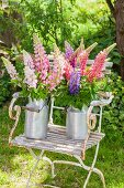 Bouquets of lupins in old milk churns on chair in garden