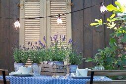 Gedeckter Gartentisch mit Lavendel und beleuchteter Lichterkette