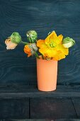 Yellow poppy and poppy buds in vase against black wooden wall