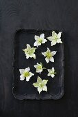 White hellebores on black tray