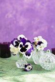 Crystal vase of violas