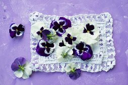 Violas on lace cloth
