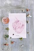 Succulents, letter stamps and pastel photo print