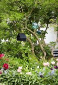 Spring flowers, suspended glass spheres and bird nesting box in garden