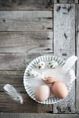 Eggs and feathers in flan tin on weathered wood