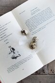 Quail eggs and white feathers on open cookery book