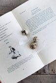 Wachteleier und weiße Federn auf einem aufgeschlagenen Kochbuch