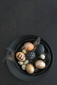Black and gold Easter eggs, feathers and quail eggs in black bowl