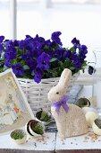 Osterhase zwischen Eierhälften mit Zeitungspapier und Kresse