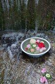 Flowers floating in zinc bowl of water in stream under waterfall