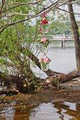Blumenampel mit Rosen und Bartnelken hängt am Ufer