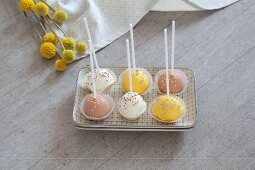 Cake pops standing upside down in square dish