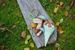 Holzpilze und Champignons in einer Papiertüte auf einem Brett