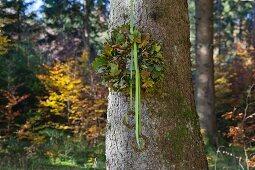 Kranz aus Eichenlaub mit Stoffbändern hängt am Baum
