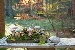 Holzpilze im Tablett mit Moos auf einem Picknicktisch im Wald