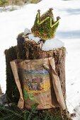 Krone aus Moos auf verschneitem Baumstamm mit Schatzkarte