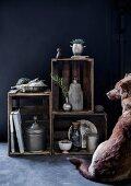 Hund sitzt vor einem Regal aus alten Holzkisten mit Zinngefäßen