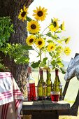 Wine bottles used as vases for sunflowers in bottle carrier on rustic wooden bench