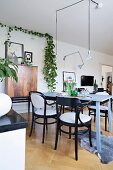 Black bentwood chairs at dove-grey wooden table in open-plan living area