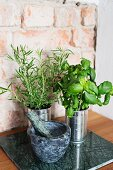 Herbs in tin cans and mortar and pestle against rustic brick wall