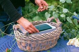Arrangement in the basket