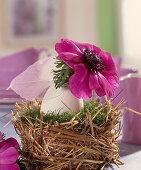 Duck egg as a flower vase in the nest