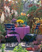 Blue garnish, pink tablecloth, aster, chrysanthemum, calluna
