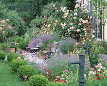 Rose garden at the house