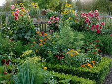Late summer in the farmers garden