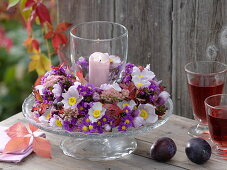 Glass wind light from autumn anemones, asters on footed glass plate