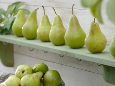 Pears 'Concord' lined up on wooden shelf
