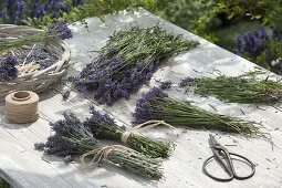 Prepare lavender bouquets for drying