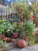 Art garden, fuchsias on the fence