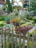 Art garden, planted art objects