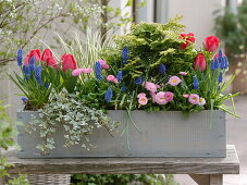 Woman repopulating box in spring
