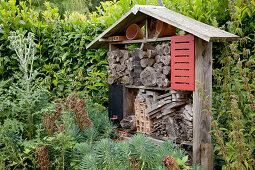Homemade insect hotel for various beneficials