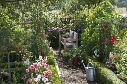 Seating in the cottage garden