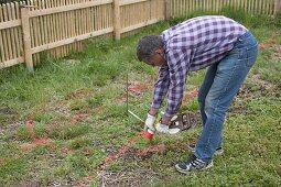 Garden planning, man pencils garden center with red color powder