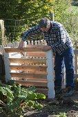 Man assembling compost container, Swiss chard (Beta vulgaris)