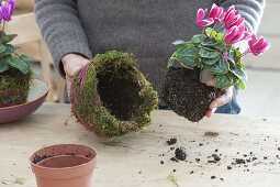 Make yourself a moss bowl