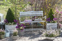 Spring terrace with planted containers and garden bench